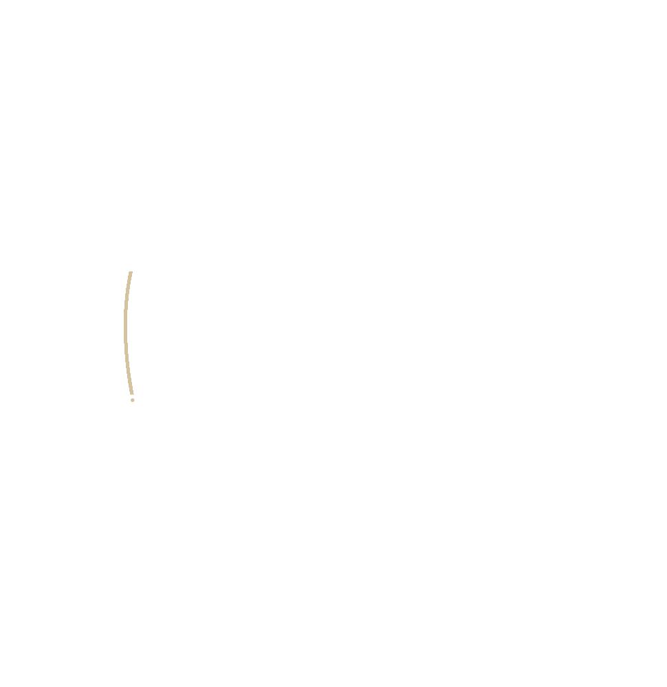 Skinlys precessus